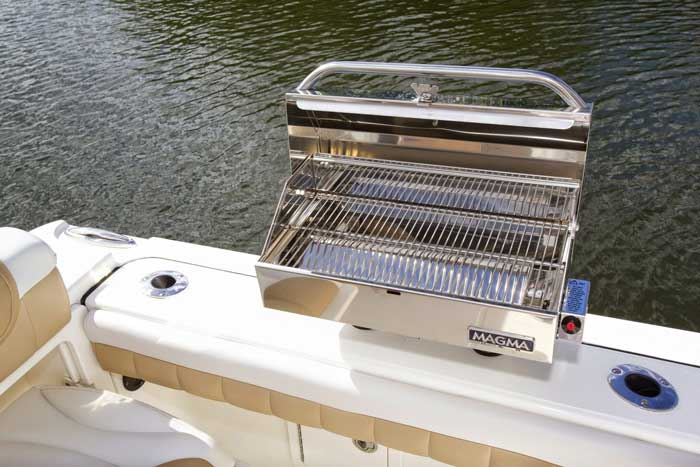 Entertainment center grill with gunwale mounts